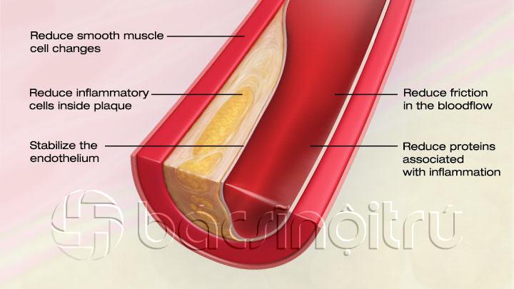 làm giảm quá trình viêm trong thành động mạch và mảng bám ổn định